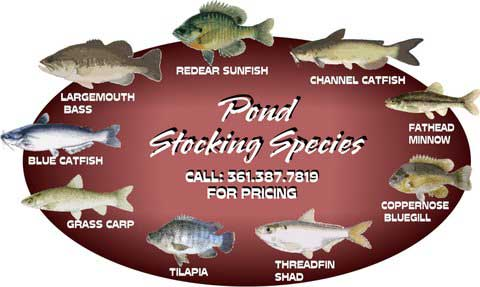 Fish Stocking Rates